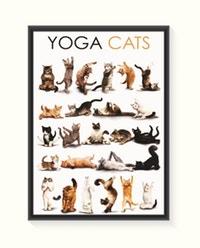 Pôster Yoga Cats - Pequeno